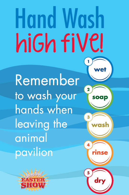 Hand Wash high five 1.png